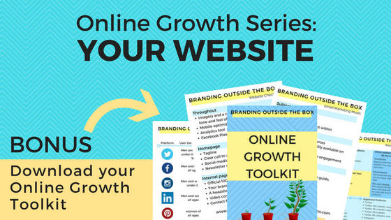Grow Your Online Following Part One: Your Website